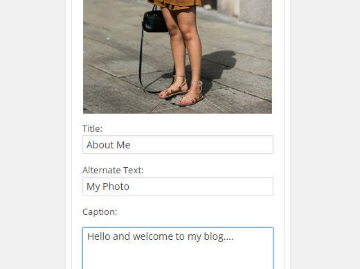Adding an Image in WordPress Sidebar Using Image Widget Plugin